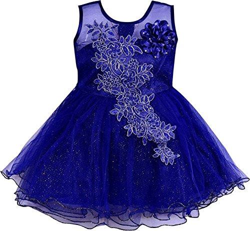 Wish Karo Baby Girls Blue Color Net Partywear Frock Dress - (fe1051blu3-4 Years)