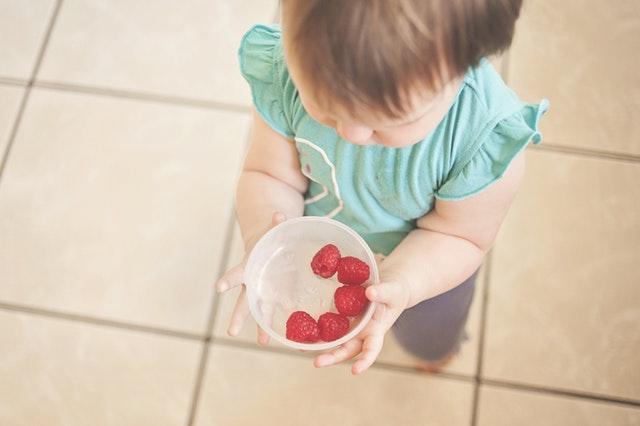 baby-food-maker