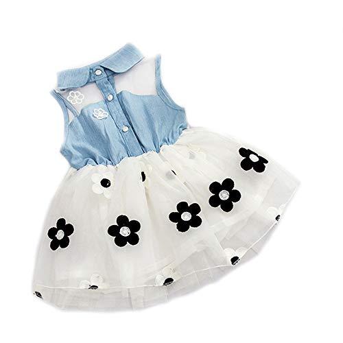 Bold N Elegant - Be Bold Inside & Elegant Outside Baby Girl's Denim Sleeveless Frock (White-Blue, 3-6 Months)
