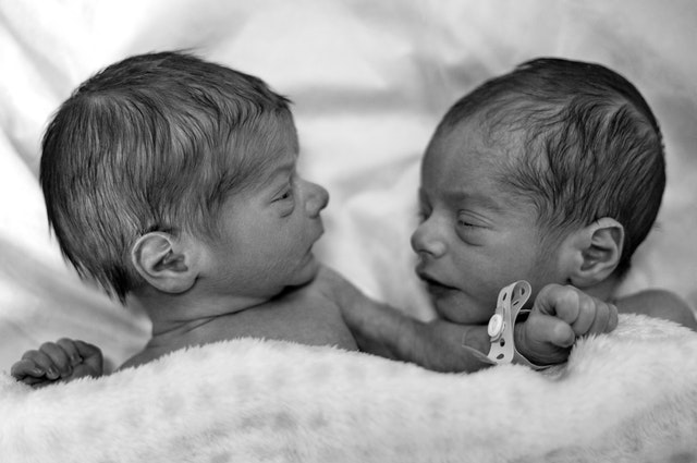 How-does-twin-pregnancy-occur