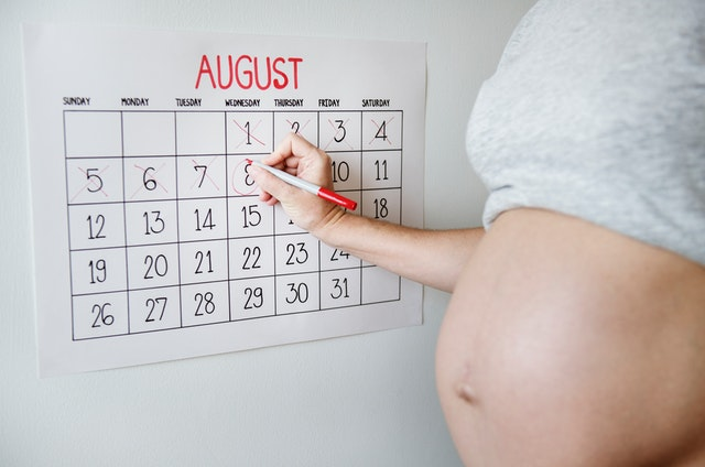 pregnancy-week-by-week