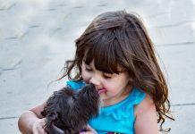 do-babies-pets-mix